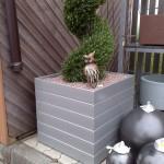 Jardiniere de interior RBW03